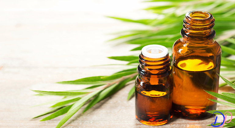 درمان زگیل تناسلی با روغن درخت چای